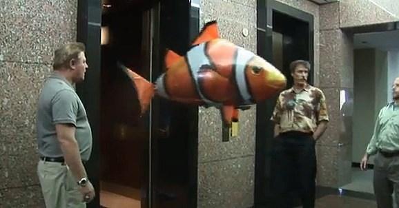 fishfinal