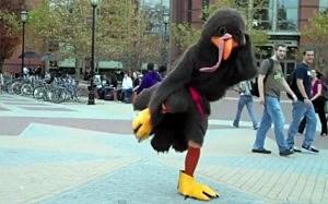 dancing turkey