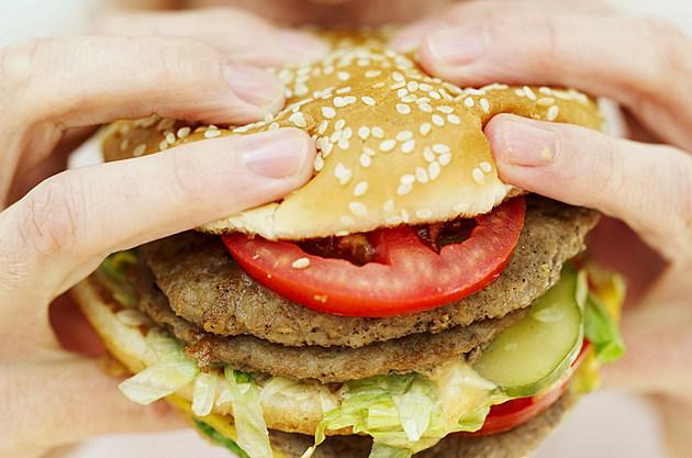 Hamburger-Cheeseburger